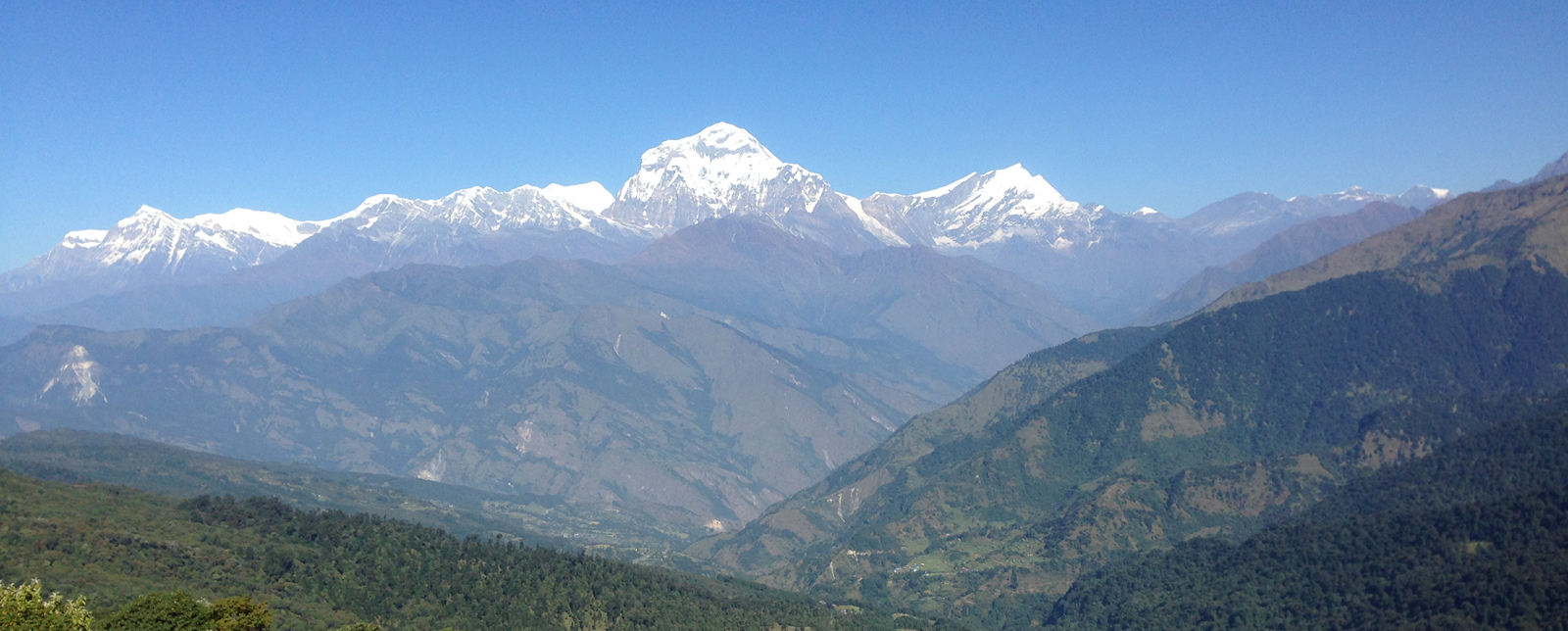 Scenic Annapurna range from Poonhill